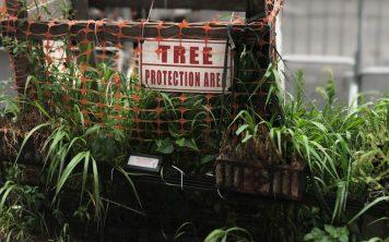 tree_protection